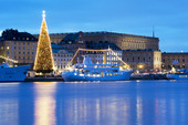 Kinneviksgranen med slottet i Stockholm