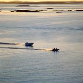 Motorbåtar på havet