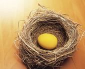 Fågelbo med ägg