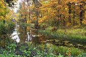 Engelska parken, Söderfors