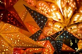 Julstjärnor