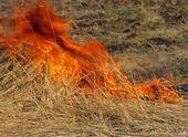Eldsvåda