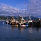 Fiskebåtar i Skottland, Storbritannien