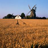 Jordbrukslandskap på Bornholm, Danmark