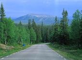 landsväg vid Städjan, Dalarna