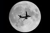 Flygplan vid fullmåne