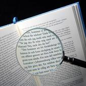 Reading the book with a magnifying glass