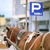 Häst på parkering, Albanien