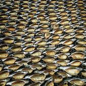 Torkad fisk, Thailand