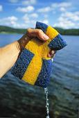 Svensk tvättsvamp
