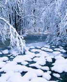 Vinternatur
