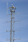 Radaranläggning, Bönans fyr, Gästrikland