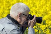 Äldre man fotograferar rapsfält