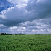 Landskap med moln