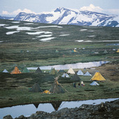 Tältläger vid renskötsel, Lappland