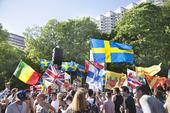 Firande av Sveriges nationaldag