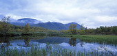 Tärnaby naturreservat, Lappland