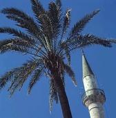Minaret, Israel