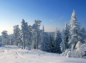 Vinterlandskap, Dalarna