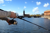 Fiske Stockholm City