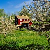Röttle naturreservat, Småland