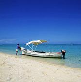 Turistbåt, Mauritius