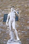 David staty av Michelangelo i Florens, Italien