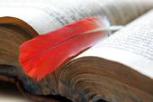Fjäder som bokmärke i äldre bokj