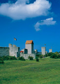 Ringmuren i Visby, Gotland