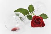 Röd ros vid liggande vinglas