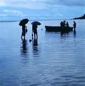 Fiskhandel, Seychellerna