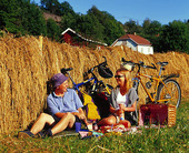 Par på picknick