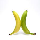 Gul och grön banan