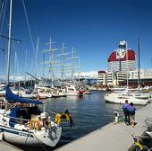 Lilla Bommens hamn, Göteborg
