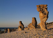 Raukar in twilight, Gotland