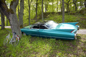 Parkering i skogen