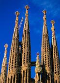 Katedral i Barcelona, Spaniern