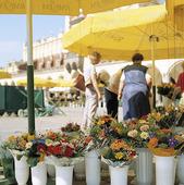 Flower Sale in Krakow, Poland