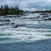 Trappstegsforsarna, Lappland