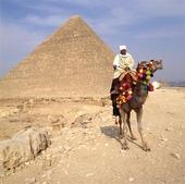 Ryttare vid Cheops pyramiden, Egypten