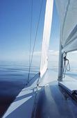 Segelbåt på lugnt vatten