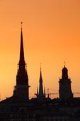 Riddarholmskyrkan och Storkyrkan, Stockholm