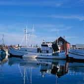 Fiskebåtar i Smögen, Bohuslän