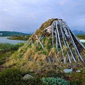 Jordkoja i Sallohaure, Lappland