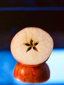 Kärnhus i äpple