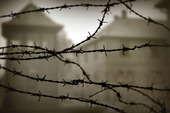 Auschwitz koncentrationsläger, Polen