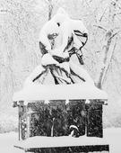 Staty Bältesspännarna i snöskrud, Göteborg
