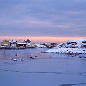 Fotö på vintern, Bohuslän
