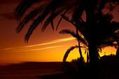 Solnedgång i tropikerna