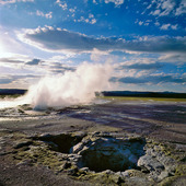 Clepsydra geyser i Yellowstone National Park, USA